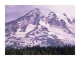 Mt Rainier, Mt Rainier National Park, Washington Prints by Tim Fitzharris