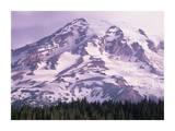 Mt Rainier, Mt Rainier National Park, Washington Prints by Tim Fitzharris