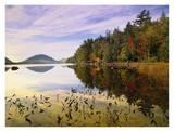 Eagle Lake, Mount Desert Island, Acadia National Park, Maine Art by Tim Fitzharris