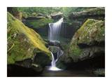 Cascade near Grotto Falls, Great Smoky Mountains National Park, Tennessee Art by Tim Fitzharris