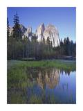 Cathedral Rock reflected in the Merced River, Yosemite NP, California Art by Tim Fitzharris