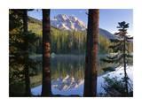 Mt Moran reflected in String Lake, Grand Teton NP, Wyoming Posters af Tim Fitzharris