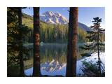 Mt Moran reflected in String Lake, Grand Teton NP, Wyoming Posters by Tim Fitzharris