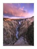 Lower Yellowstone Falls, Yellowstone National Park, Wyoming Prints by Tim Fitzharris