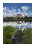 Mammoth Peak reflected in seasonal pool, Yosemite NP, California Posters by Tim Fitzharris