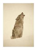 Timber Wolf portrait, howling in snow, North America - Sepia Plakater af Tim Fitzharris