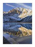 Laurel Mountain reflected in Convict Lake, eastern Sierra Nevada, California Plakat af Tim Fitzharris