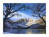 Laurel Mountain and Convict Lake in winter, eastern Sierra Nevada, California Posters by Tim Fitzharris