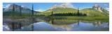 Mt Burgess reflected in Emerald Lake, Yoho National Park, British Columbia, Canada Plakater af Tim Fitzharris