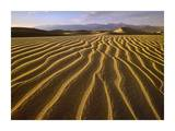 Sand dunes, Death Valley National Park, California Poster by Tim Fitzharris