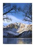 Laurel Mountain reflected in Convict Lake, eastern Sierra Nevada, California Plakater af Tim Fitzharris