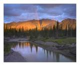 Rainbow over Fairholme Range and Exshaw Creek, Alberta, Canada Posters by Tim Fitzharris