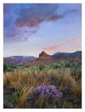 Caprock Canyons State Park, Texas Prints by Tim Fitzharris