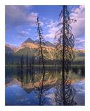 Chancellor Peak reflected in lake, Yoho National Park, BC, Canada Posters by Tim Fitzharris