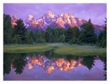 Grand Tetons at Schwabacher Landing, Grand Teton NP, Wyoming Poster af Tim Fitzharris