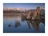Wind and rain eroded tufa formations along shore of Mono Lake, California Posters by Tim Fitzharris