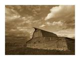 Mormon Row Barn, Grand Teton National Park, Wyoming - Sepia Prints by Tim Fitzharris