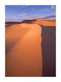 Wind ripples in sand dunes, Coral Pink Sand Dunes State Park, Utah Poster by Tim Fitzharris