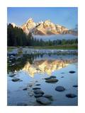 Teton Range reflected in water, Grand Teton National Park, Wyoming Posters by Tim Fitzharris