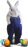 Easter Bunny Overalls Lifesize Standup Cardboard Cutouts