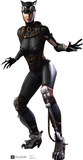Catwoman - Injustice DC Comics Game Lifesize Standup Cardboard Cutouts