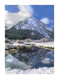 Phi Kappa Mountain reflected in river, Idaho Poster by Tim Fitzharris