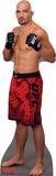 Glover Teixeira - UFC Lifesize Standup Cardboard Cutouts