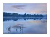 Mist over Lackawanna Lake, Lackawanna State Park, Pennsylvania Prints by Tim Fitzharris