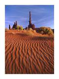 Totem pole and Yei Bi Chei with sand dunes, Monument Valley, Arizona Poster by Tim Fitzharris