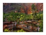 Cascades and desert varnish at Emerald Pools, Zion National Park, Utah Prints by Tim Fitzharris