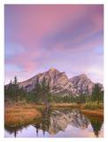 Mount Kidd and trees reflected in pond, Alberta, Canada Print by Tim Fitzharris