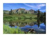 Ruby Peak reflected in lake, Raggeds Wilderness, Colorado Posters by Tim Fitzharris