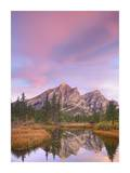 Mount Kidd and trees reflected in pond, Alberta, Canada Prints by Tim Fitzharris