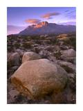 Boulder field and El Capitan, Guadalupe Mountains National Park, Texas Posters by Tim Fitzharris