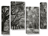 Live Oak Avenue 4 piece gallery-wrapped canvas Stretched Canvas Print by Steve Ainsworth