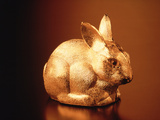 Golden Easter Bunny Photographic Print by Frithjof Hirdes