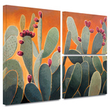 Cactus Orange Gallery-Wrapped Canvas Gallery Wrapped Canvas Set by Rick Kersten