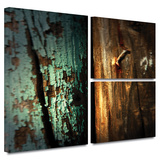Wood and Nail Gallery-Wrapped Canvas Posters by Mark Ross