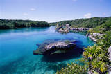 Lagoon at Xel Ha National Park in Mexico Photographic Print by Danny Lehman
