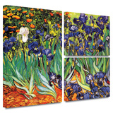 Irises in the Garden Gallery-Wrapped Canvas Stretched Canvas Print by Vincent van Gogh