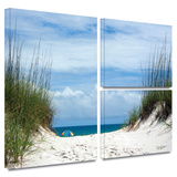 Ocean Path Gallery-Wrapped Canvas Stretched Canvas Print by David Liam Kyle