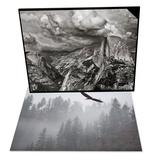 Bald Eagle Flying over Trees, Idaho & Half Dome under Storm, Yosemite Nat'l Park Set Posters by Antonio Busiello