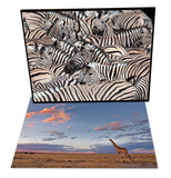 Giraffe at Dusk & Plains Zebra and Crowd at Waterhole, Etosha National Park, Namibia, Africa Set Prints by Ann & Steve Toon