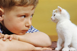 Boy Looking at White Kitten Photographic Print by William P. Gottlieb