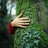 Tree Hugger Photographic Print by Michael Prince
