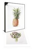 Artichoke Study, 1993 & Pineapple, 1997 Set Art by Alison Cooper