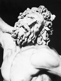 Detail of the Head of Laocoon from the Laocoon Group Photographic Print