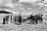 Moving Cattle into Corral Reproduction photographique par W.H. Shaffer
