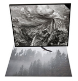 Bald Eagle Flying over Trees, Idaho & Half Dome under Storm, Yosemite Nat'l Park Set Poster by Antonio Busiello