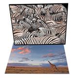 Giraffe at Dusk & Plains Zebra and Crowd at Waterhole, Etosha National Park, Namibia, Africa Set Art by Ann & Steve Toon